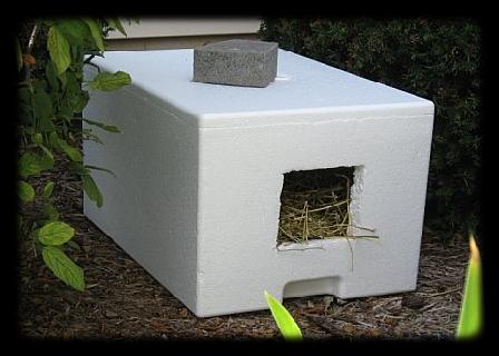 abri chats hiver. Black Bedroom Furniture Sets. Home Design Ideas